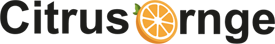 Citrus Ornge: UK Digital Marketing Agency Logo